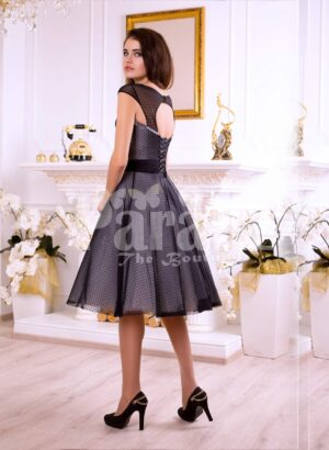 Women's tea length rich satin-sheer evening party dress with white lace appliquéd bodice back side view